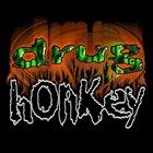 DRUG HONKEY Drug Honkey album cover