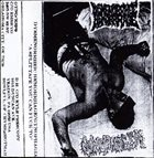 DYSMENORRHEIC HEMORRHAGE A Split Tape You Can Fuck To Images album cover