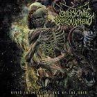EMBRYONIC DEVOURMENT Vivid Interpretations of the Void album cover