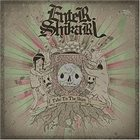 ENTER SHIKARI Take To The Skies album cover