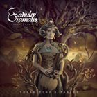 FABULAE DRAMATIS Solar Time's Fables album cover