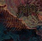 Insularum album cover
