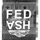 FED ASH Diurnal Traumas album cover