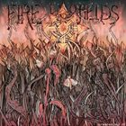 FIRE TO FIELDS Fire To Fields / Dirtpill album cover