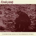 FLOURISHING A Momentary Sense of the Immediate World album cover