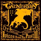 GALNERYUS Voices From The Past III album cover