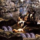GIANT SQUID Metridium Field album cover