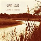GIANT SQUID Monster in the Creek album cover