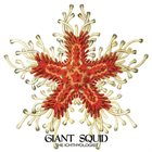 GIANT SQUID The Ichthyologist album cover