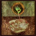 GIRE V album cover