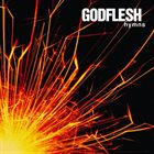 GODFLESH Hymns album cover