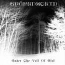 GRÄFENSTEIN Under the Veil of Mist album cover