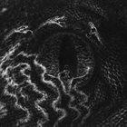 GRAFVITNIR Necrosophia album cover