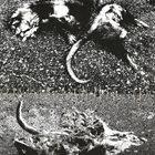 GRIPPER The Violent Earth album cover