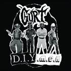 GURT DIYMCA album cover