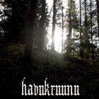 HAVUKRUUNU Metsänpeitto album cover