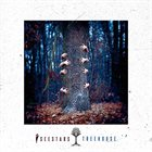 I SEE STARS Treehouse album cover