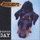 IMPOTATORS Perfect Day album cover