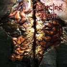 INFECTED BRAIN Infected Brain album cover