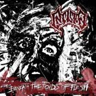 INSISION Beneath the Folds of Flesh album cover
