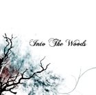 INTO THE WOODS Into the Woods album cover