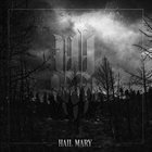 IWRESTLEDABEARONCE Hail Mary album cover
