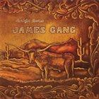 JAMES GANG Straight Shooter album cover
