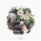 JOHARI Terra album cover