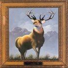KILLDOZER (WI) Twelve Point Buck album cover