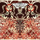 LIBLIKAS Wooden Spaceship album cover