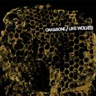LIKE WOLVES Oak & Bone / Like Wolves album cover