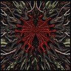 LOMERA Lomera album cover