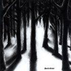 LUNAR AURORA Seelenfeuer album cover