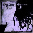 MAELSTROM VALE Silhouettes album cover