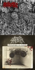 MEAT SPREADER Archagathus/Transfer to Ward 13 album cover