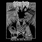 MELANCHOLIA (WA) Agony In The Garden II album cover