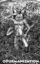 MENTAL DEMISE Psycho-Penetration / Odurmanization album cover