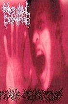 MENTAL DEMISE Psycho-Penetration album cover