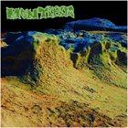 MONTIBUS Irregular Como En Las Montañas album cover