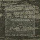 NEGURĂ BUNGET Măiestrit album cover