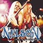 NELSON Perfect Storm album cover