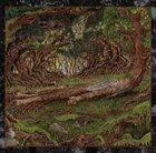 NJIQAHDDA Il' Flaen album cover