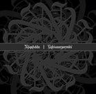 NJIQAHDDA Valsuaarpormiis album cover