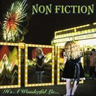 NON-FICTION It's a Wonderful Lie... album cover