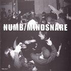 NUMB Numb / Mindsnare album cover