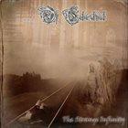 The Strange Infinity album cover