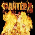PANTERA Reinventing the Steel album cover