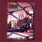 PERPETUA Irrational album cover
