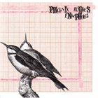 PHOENIX BODIES Phoenix Bodies / Enkephalin album cover
