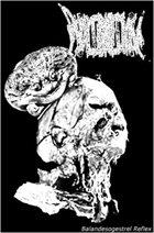 PHYLLOMEDUSA Balandesogestrel Reflex / Frogs album cover